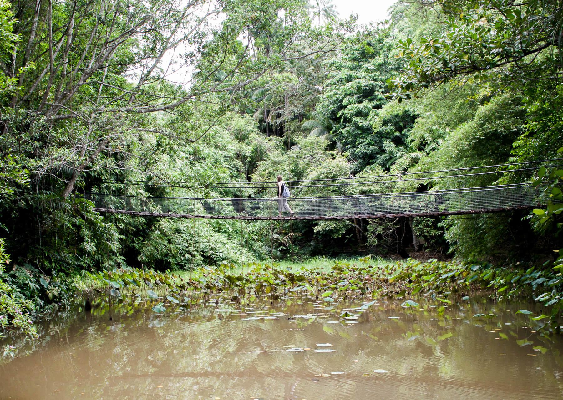 Girl walking across rope bridge in Borneo