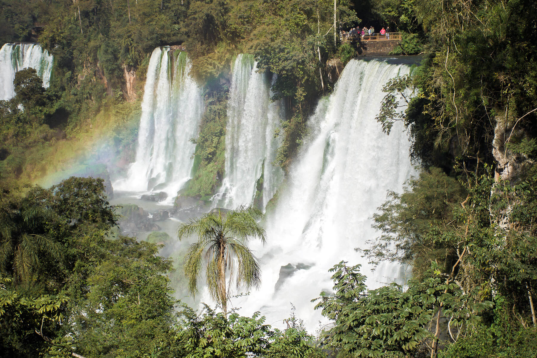 Rainbow infront of Iguazu Falls in the middle of the Rainforest