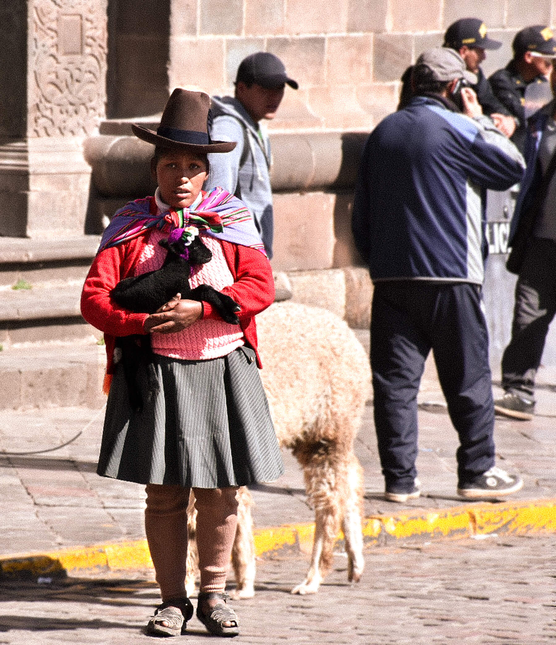 A local peruvian lady dressed in traditional clothing whilst holding a baby alpaca that is wearing a knitted hat