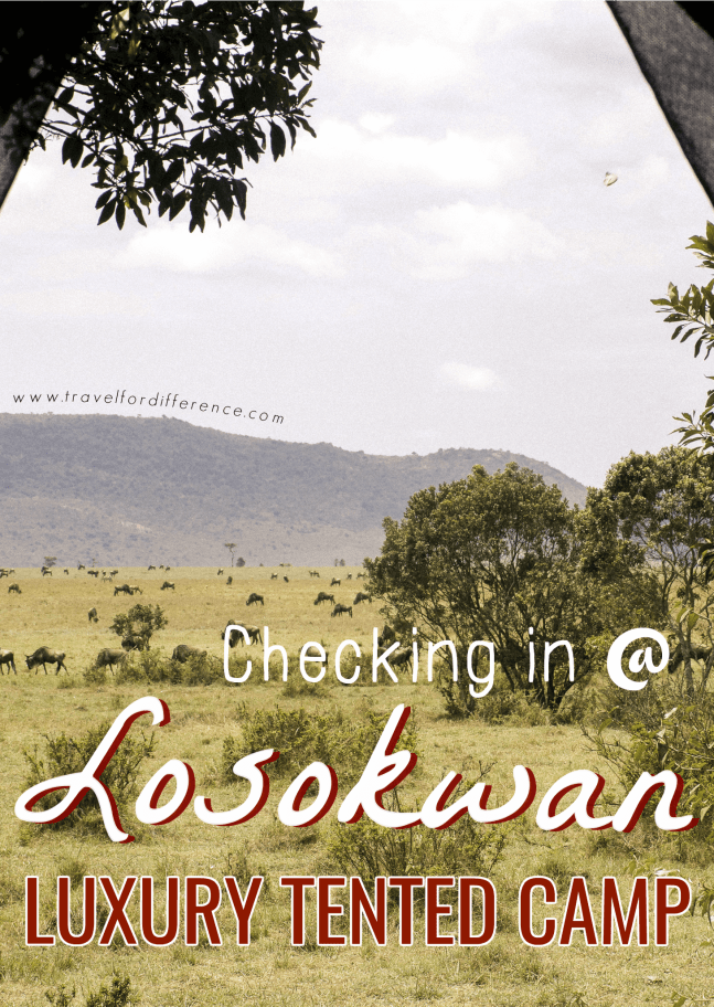 Checking in @ Losokwan Luxury Tented Camp, Maasai Mara