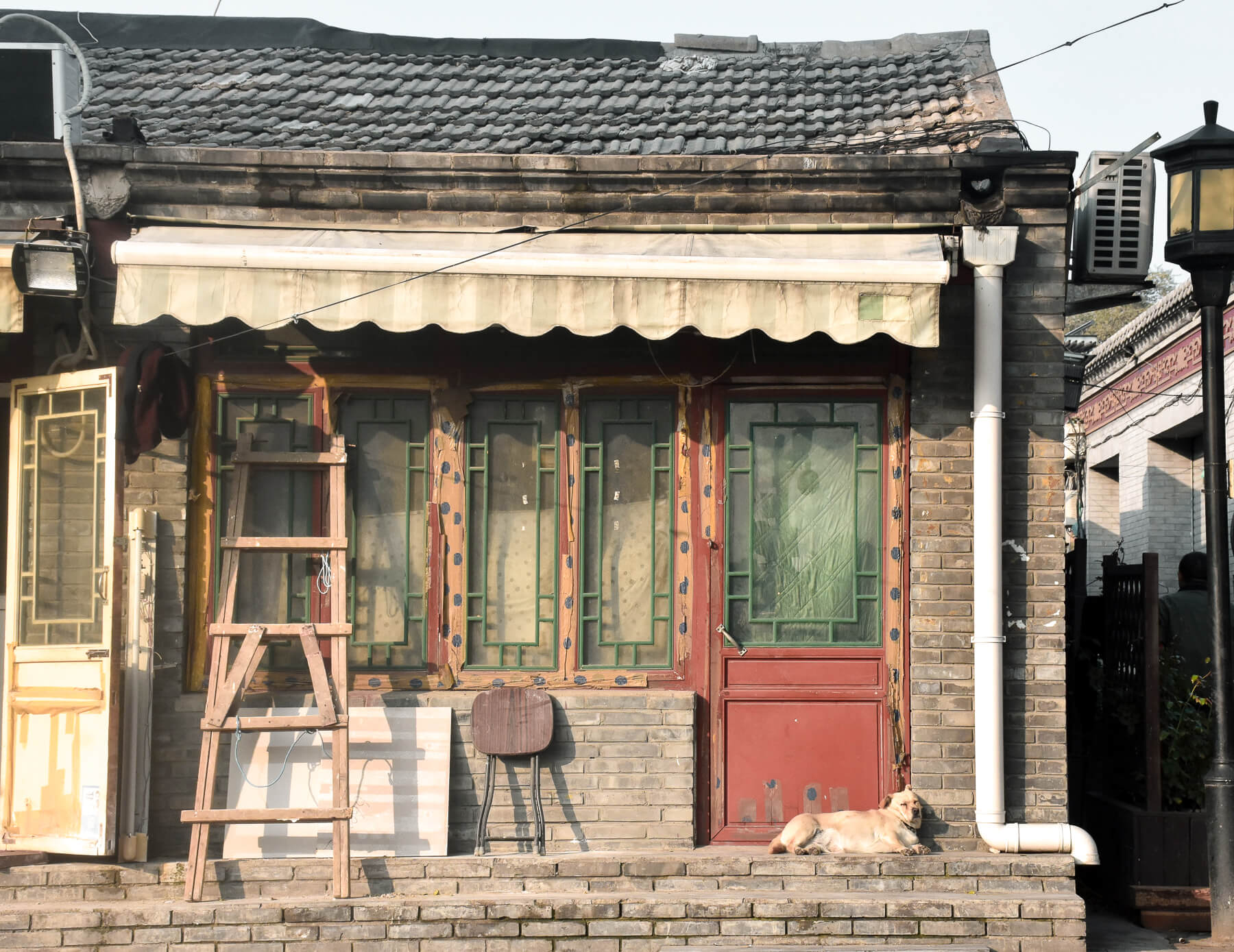 A labrador sleeping on the front door step of an old house in Hutong