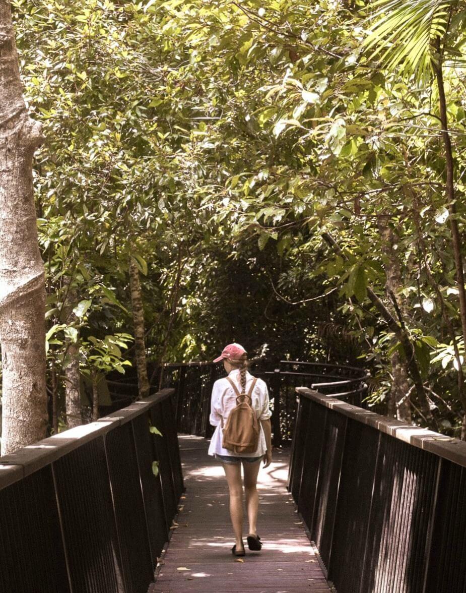 Girl walking along boardwalk in Karunda to Barron Falls