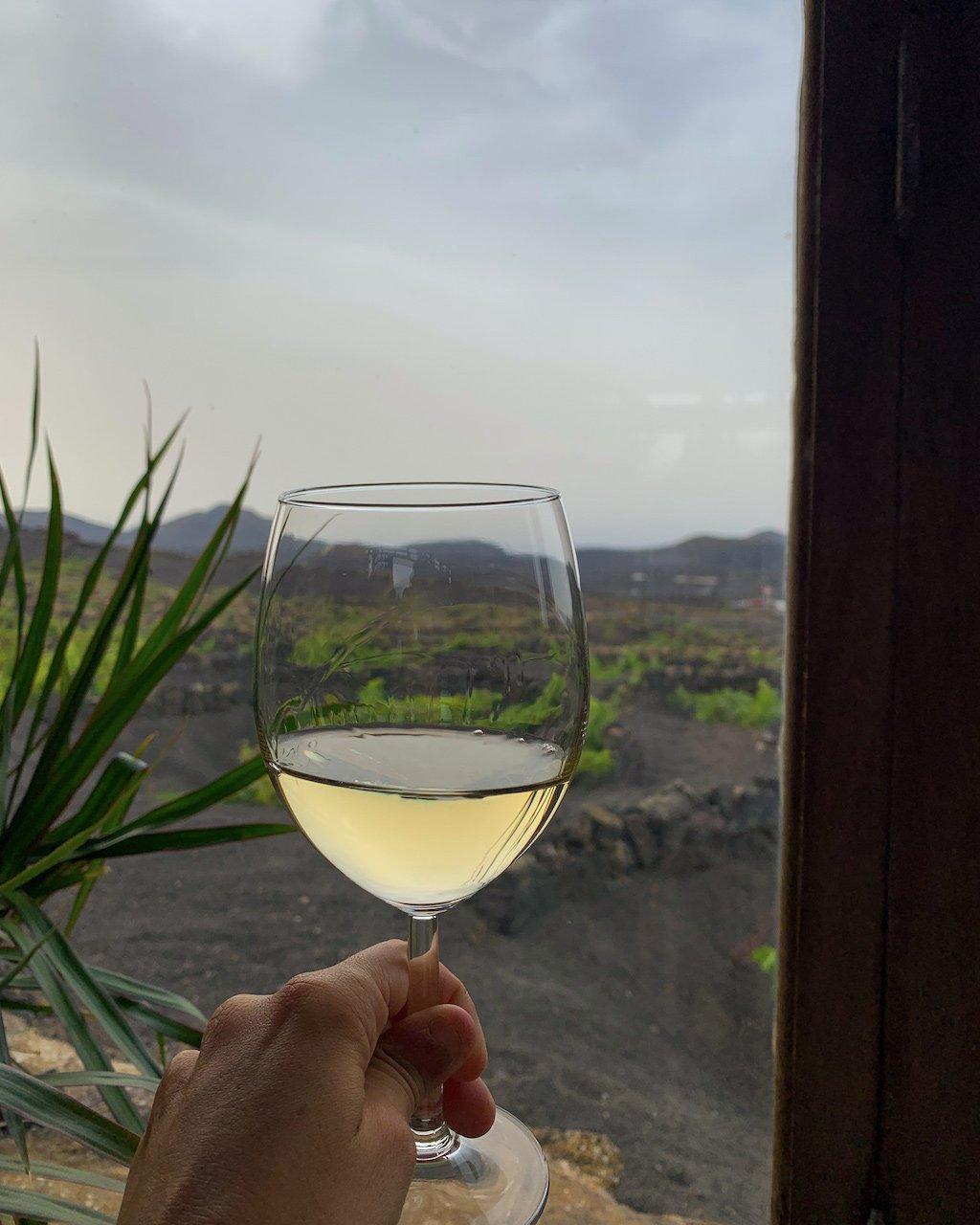wine tasting Lanzarote