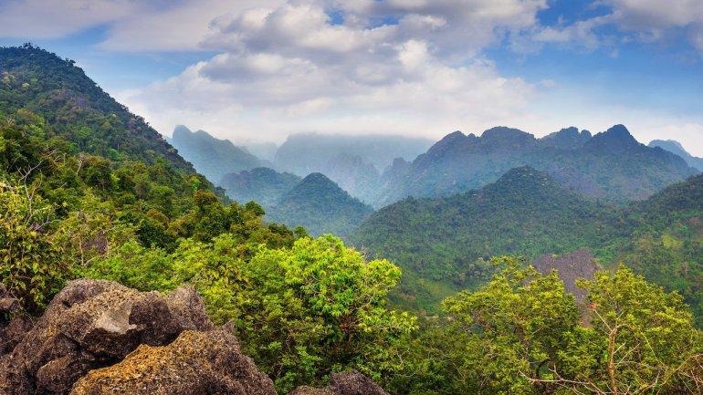 trekking nella giungla del Laos