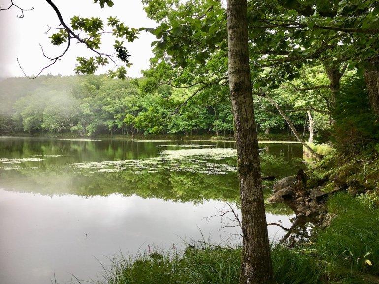 laghi shiretoko giappone