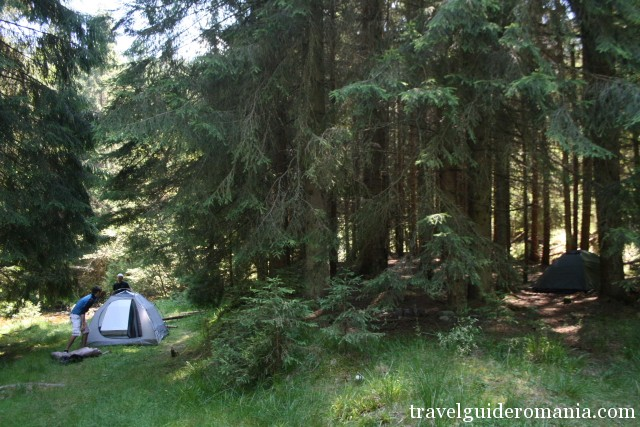 camping site in the forest near the tourist track - red point