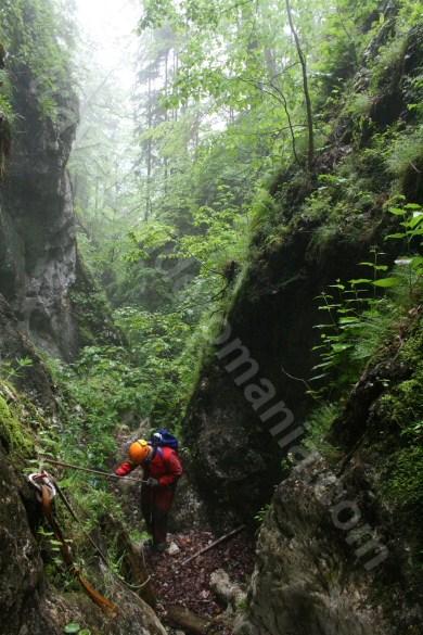 Verticala 5 - canionul Cheia Rea - amonte de Valea Sighistelului