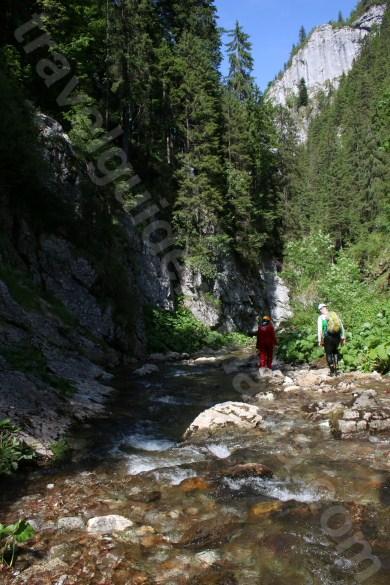 Romania salbatica - Muntii Apuseni
