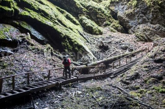 Misterul existenței Ghețarului subteran de la Scărișoara
