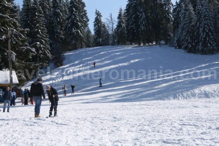 Partia de schi din Stana de Vale