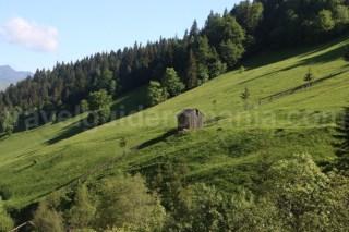 Parcul National Muntii Rodnei - Romania