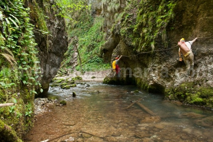 Via ferrata in Cheile Galbenei - Muntii Apuseni