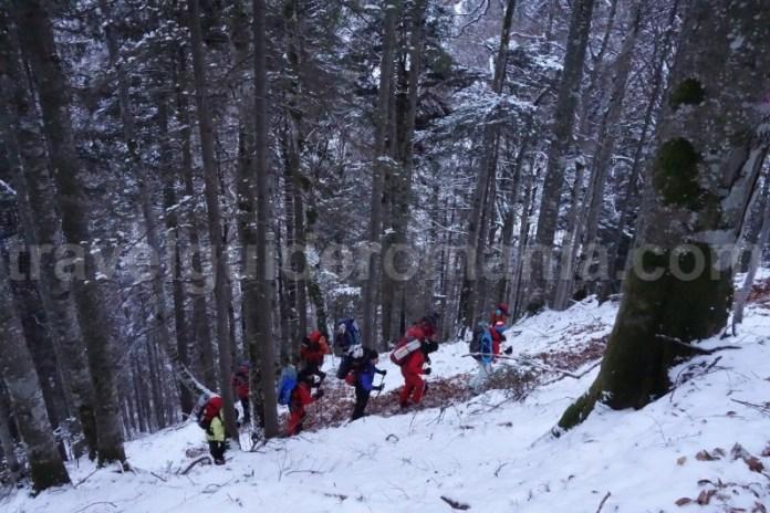 Marcaj turistic spre refugiul Gugu - Muntii Godeanu