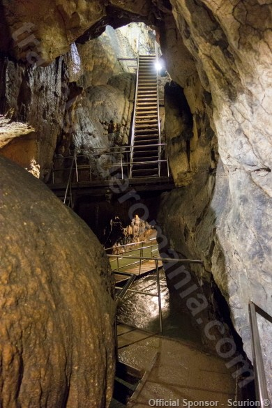 Excursii ghidate la Pestera Vadu Crisului - Muntii Apuseni