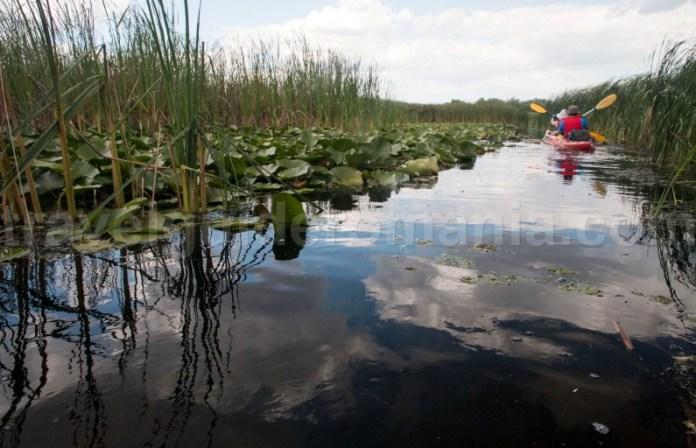sejur-turistic-in-delta-dunarii-plimabari-cu-caiacul
