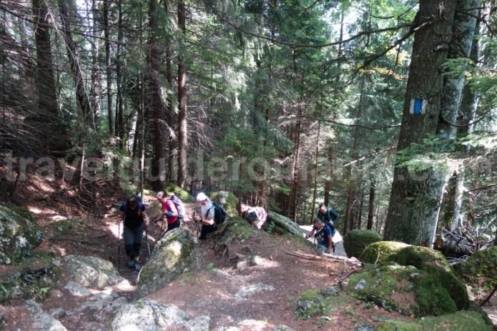 Trasee marcate din muntii Bucegi - valea Malaiesti