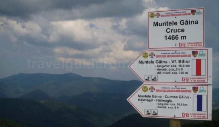 Mountain biking in muntii Apuseni