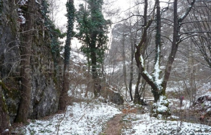 cheile misidului iarna