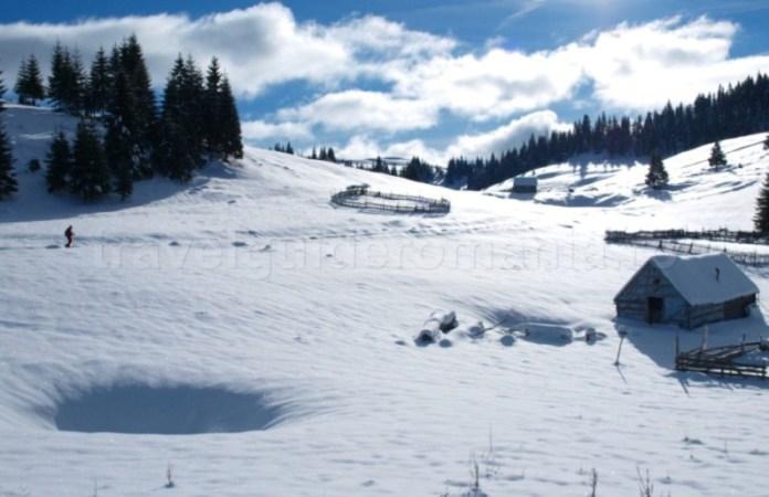 Dolina in Ppadis Apuseni