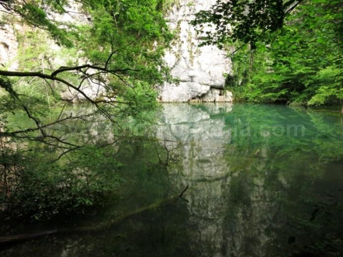 Defileul Crisului Padurea Craiului