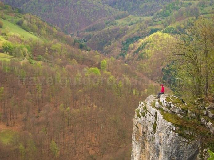 boiu Ponoara Padurea Craiului Apuseni