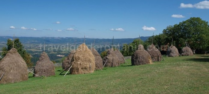capite-Ponoara-mtb-Padurea-Craiului-Apuseni