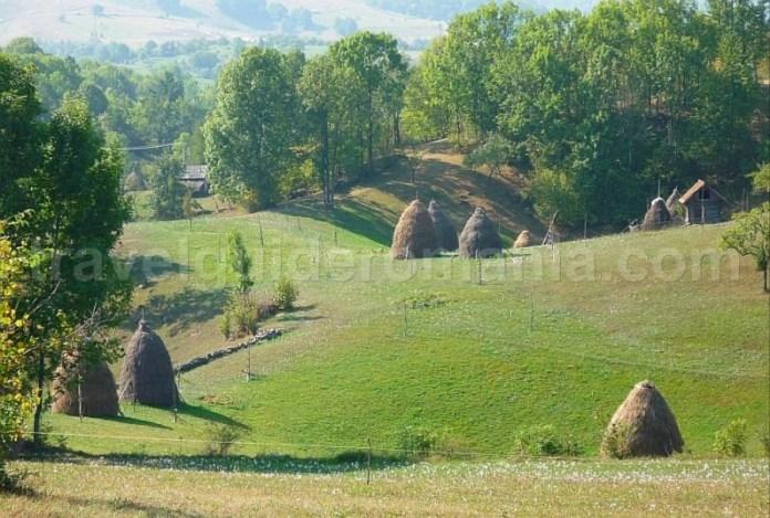 hiking capite doline Ponoara mtb Padurea Craiului Apuseni