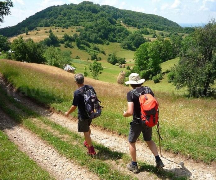 hiking rosia mtb Padurea Craiului Apuseni