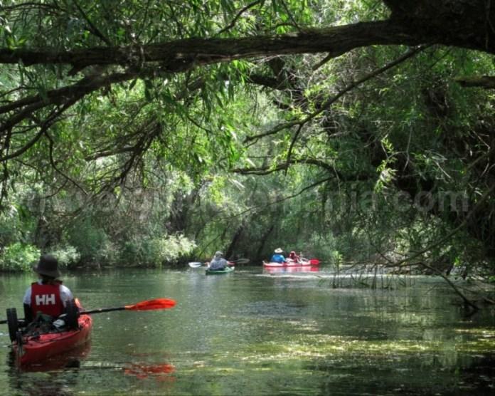 rezervatia biosferei delta dunarii caiac canal