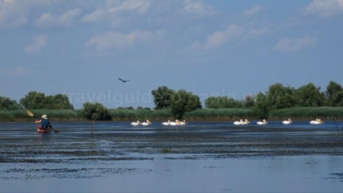 rezervatia biosferei delta dunarii caiac pelicani