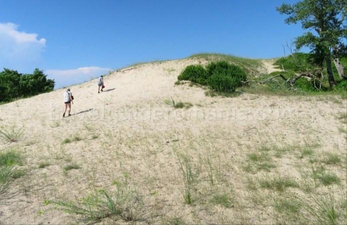 rezervatia biosferei delta dunarii padurea letea dune