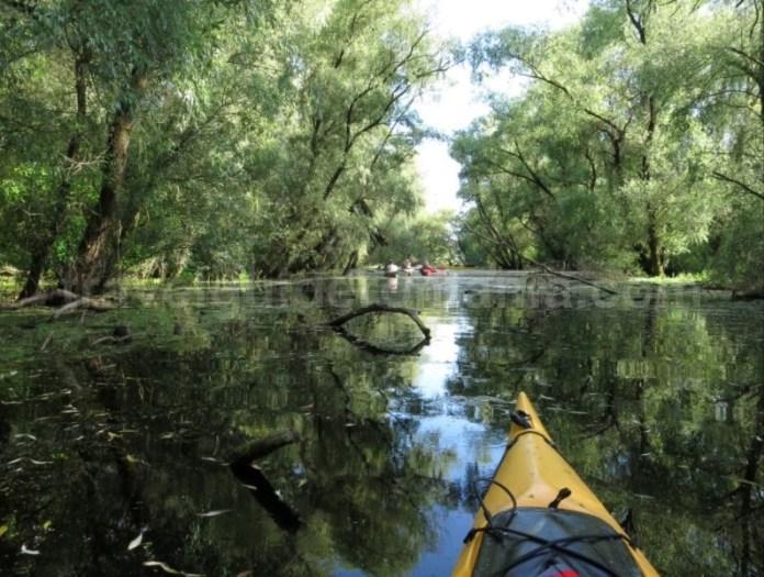 rezervatia delta dunarii canale caiac
