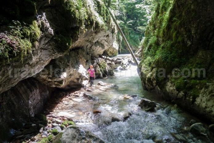 Vacanta de aventura in Muntii Apuseni