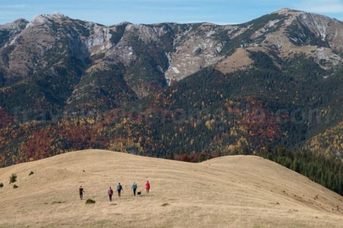 Locuri de vizitat la munte in Romania - Creasta Oslea