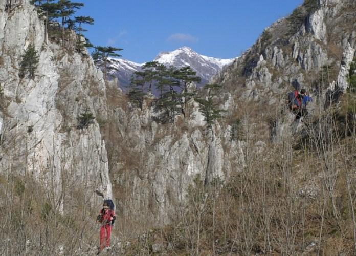 Parcul Naţional Domogled - Valea Cernei cheile tasnei