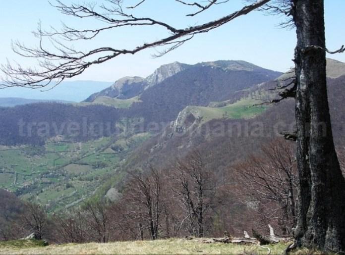 Parcul Naţional Domogled - Valea Cernei prisacina