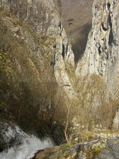 Parcul Naţional Domogled - Valea Cernei ramnuta