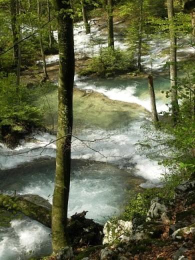 Parcul Național Cheile Nerei-Beușnița Cascadele Beusnitei