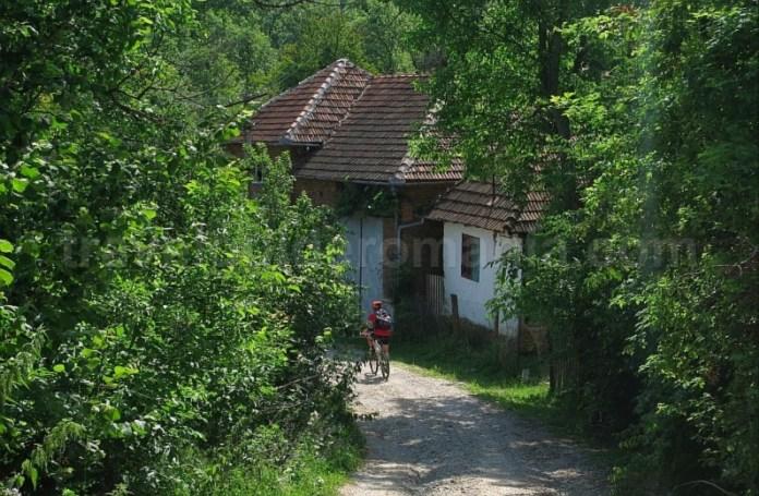 Platoul Vascau Apuseni sat Colesti