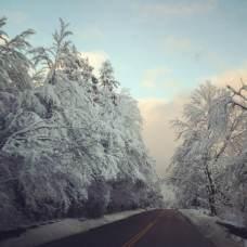 Snowy Ripton