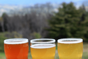 Best Vermont Brewers