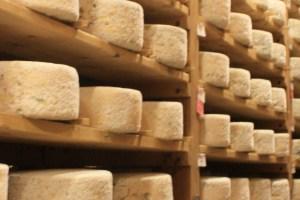Best Vermont Cheese