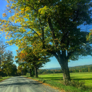 Fall Road Trip in Vermont
