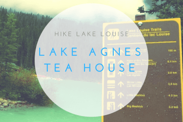 Hike to Lake Agnes Tea House