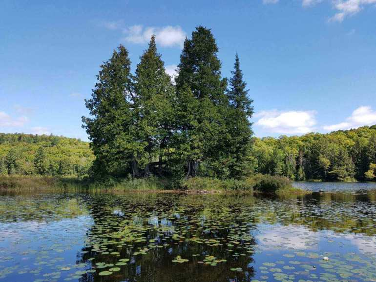 Oxtongue Lake near Algonquin National Park