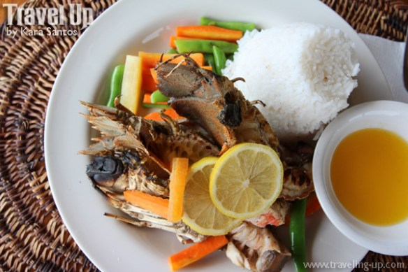 04. seadive coron lobster