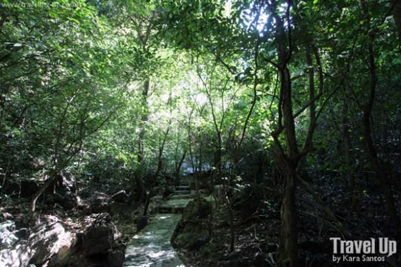 palo alto falls walkway forest