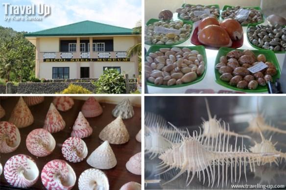 bicol shell museum minalabac camarines sur