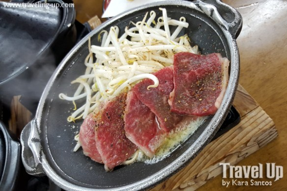 19. takayama japan hida beef veggies