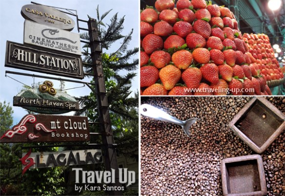 17-baguio-city-philippines-mt-cloud-coffee-strawberries